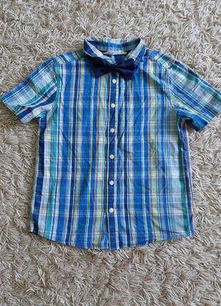 Коттонова рубашка з метеликом. розмір 134 см
