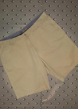 🎁1+1=3 фирменные базовые шорты из хлопка tu, размер 52 - 54, премиум коллекция