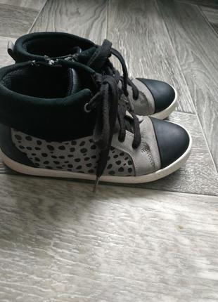 Хайтопы, осенние ботинки