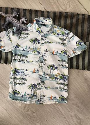 Сорочка дитяча футболка next
