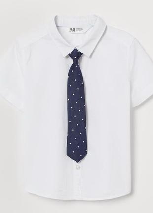 Хлопковая рубашка h&m с галстуком