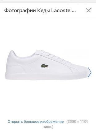 Стильные белые кроссовки кеды lacoste original