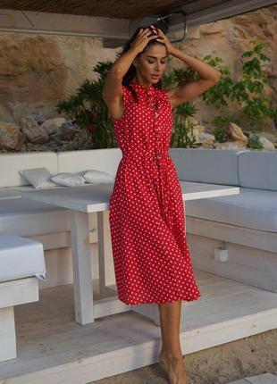Сукня міді плаття в горошок на гудзики з поясом платье