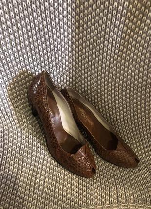 Туфли кожа питона