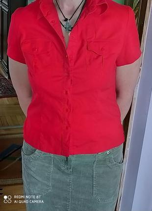 Блуза женская l cotton