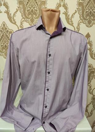 Next сиреневая рубашка в мелкую полоску, длинный рукав