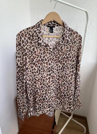 Рубашка блуза анималистическая