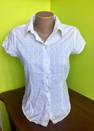 Блуза белая на пуговицах короткий рукав с воротником  cherokee из хлопка