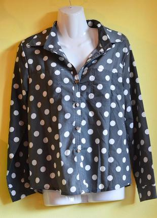 Блуза в горошек /все от 3 грн
