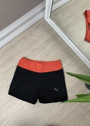 Puma шорты спортивные чёрные пума оригинал женские спорт велосипедки