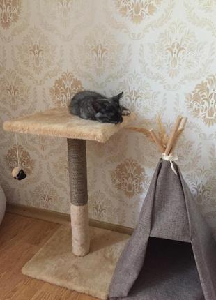 Лежанка, дряпка для кота