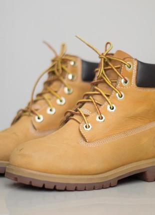 Демисезонные ботинки timberland