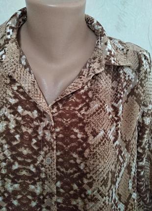 Рубашка h&m в змеиный принт