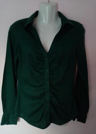 Зелена сорочка