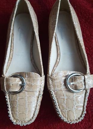 Туфли, мокасины.