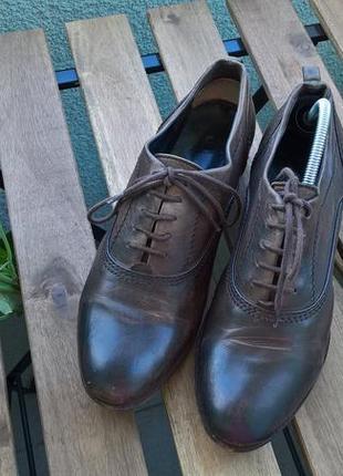 Туфли кожаные от kennel & schmenger коричневые на шнуровку-38р