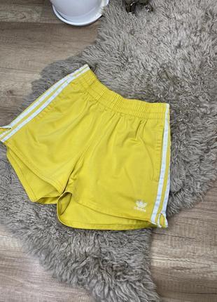 Шикарные шорты спортивные adidas/ nike/ under armour  оригинал