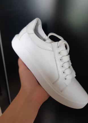 Топ качество. кожаные белоснежные кеды  с 36-41р2 фото