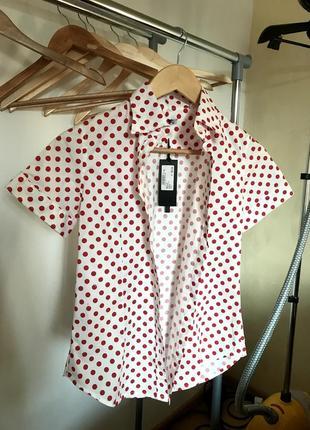 Сорочка в горох yoshii