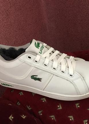 Серебристые женские кроссовки Lacoste 2019 - купить недорого вещи в ... 64038b272da