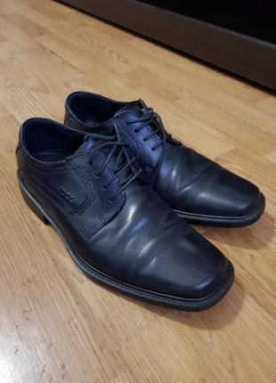Мужские кожаеые туфли ecco