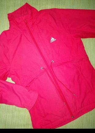 Ветровка, демисезонная куртка
