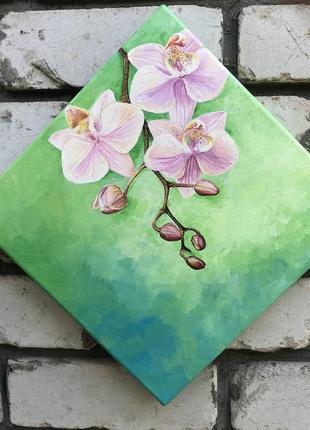 Картина интерьерная орхидея