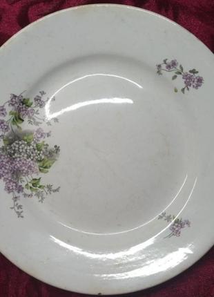 Редкое клеймо лев тарелка блюдо 1920 ссср антиквариат