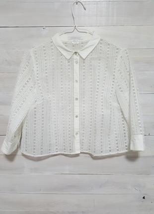 Изысканная французкая блузка