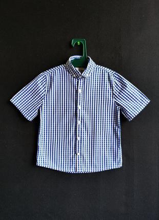 Детская хлопковая рубашка next