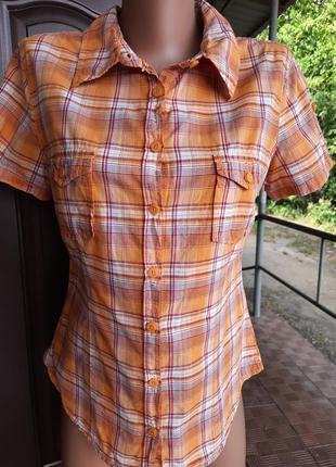 Хлопковая рубашка в клетку