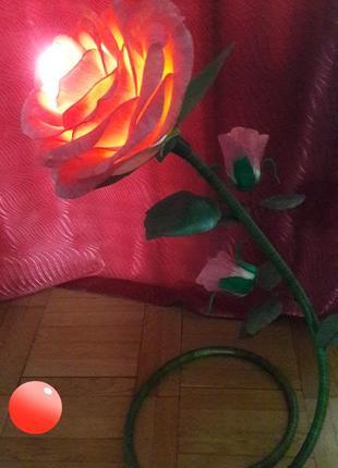Ночник-роза
