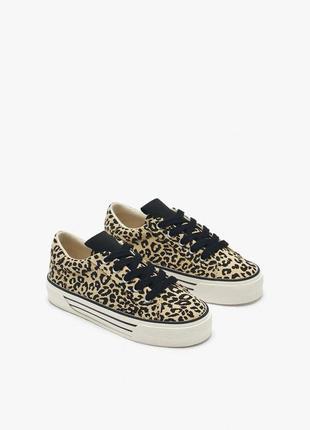 Новые кеды кроссовки леопардовый животный принт vans zara