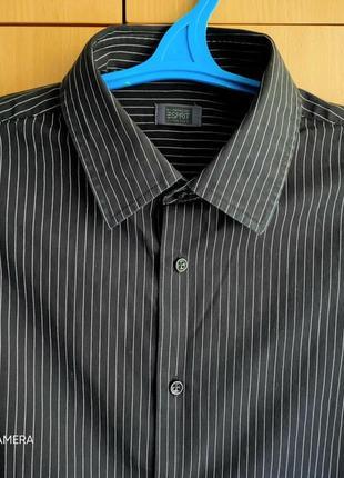 Рубашка esprit collection/usa/в полоску/black-white/оригинал.