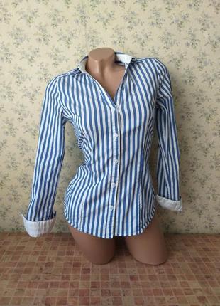 Рубашка в полоску. стрейчевая рубашка. рубашка h&m. котоновая рубашка.