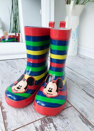 Гумові чоботи. резиновые сапоги