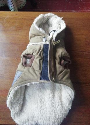 Тёплая жилетка для маленькой собаки