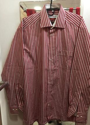 Стильна фірмова сорочка