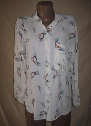 Вискозная блуза зара р-р8