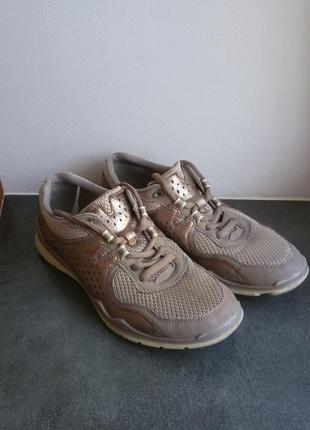 Очень классные кросы ecco2 фото