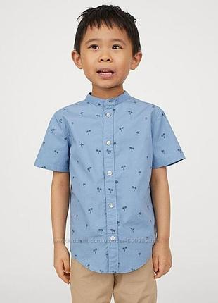 Рубашка h&m.