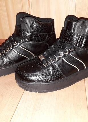 Кеди ботинки buffalo