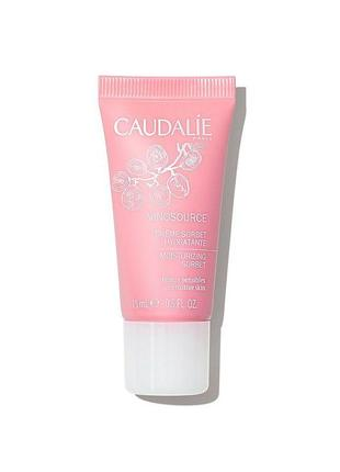 Caudalie vinosource moisturizing sorbet крем-сорбет для лица