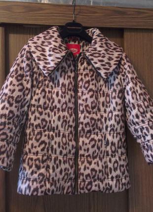Стильная леопардовая куртка рукав три четверти daser