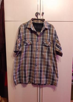 Рубашка torelli
