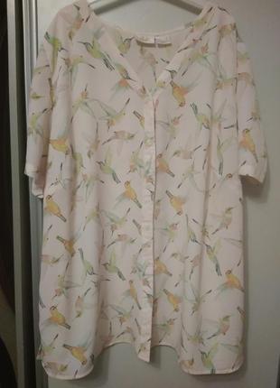 Красивая блуза, рубашка, размер 58-60