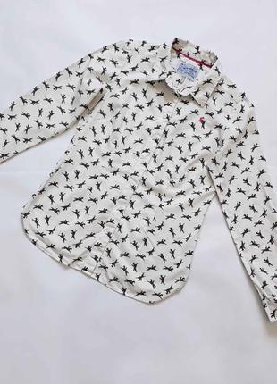 Красивая коттоновая рубашка с лошадками superduper shirting в отличном состоянии