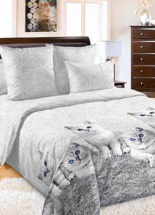 Кесси - постельное белье с кошечками перкаль, 100% хлопок
