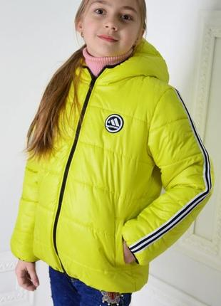 Куртка спорт с лампасами