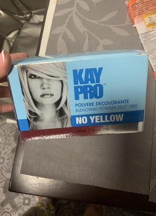 Итальянская пудра для осветления без желтезны kay pro no yellow branches powder